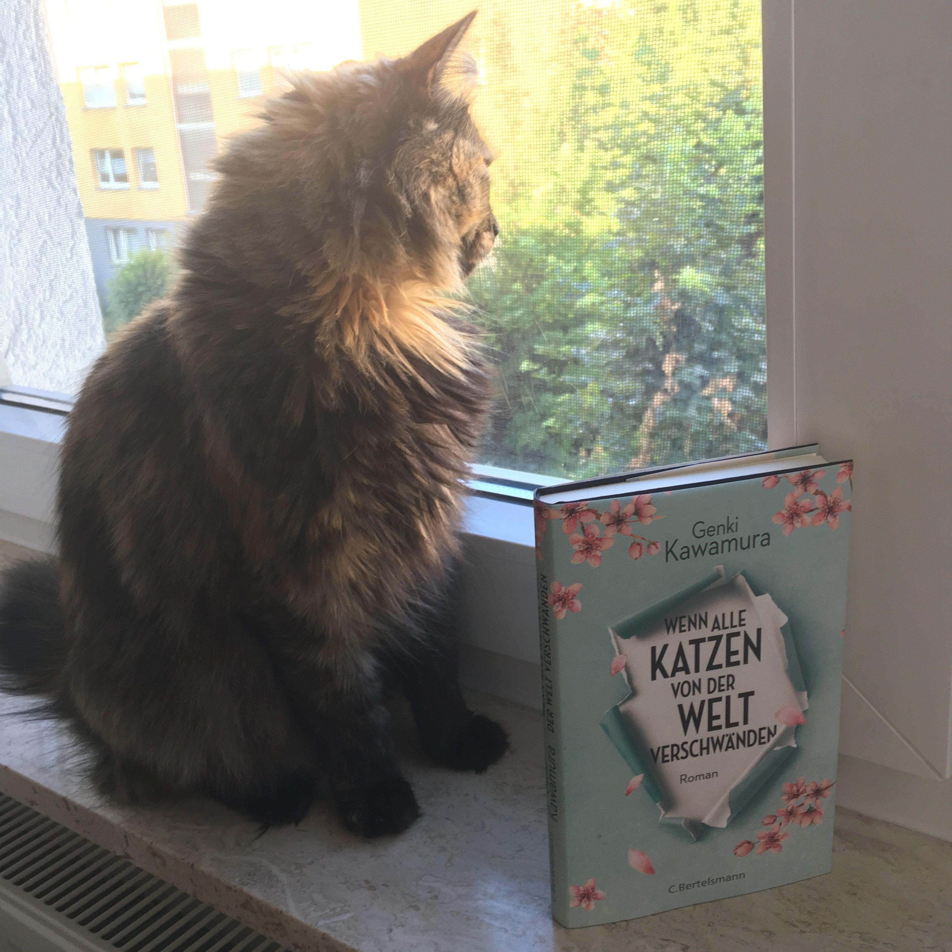 Cover Wenn alle katzen von der welt verschwänden