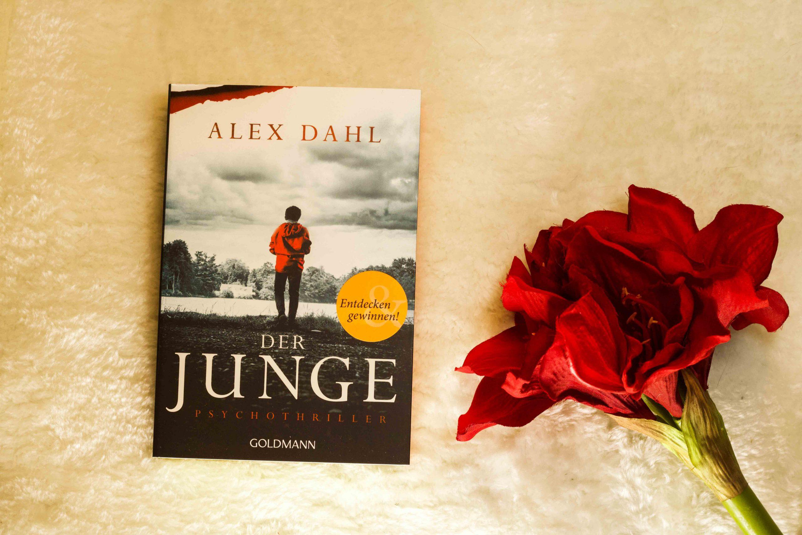 Cover Der Junge von Alex Dahl