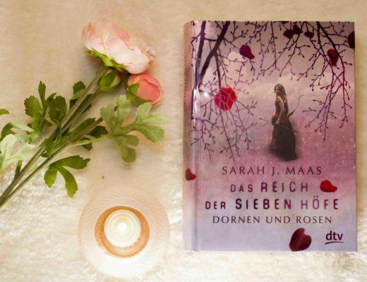 Cover Das Reich der sieben Höfe